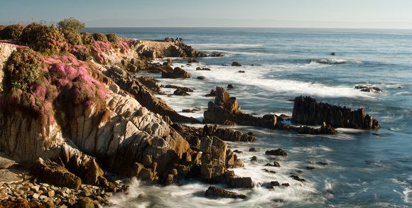 Pacific Grove coastline